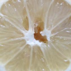 Du citron pour désinfecter