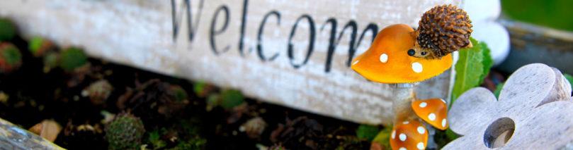 Bienvenue ici !