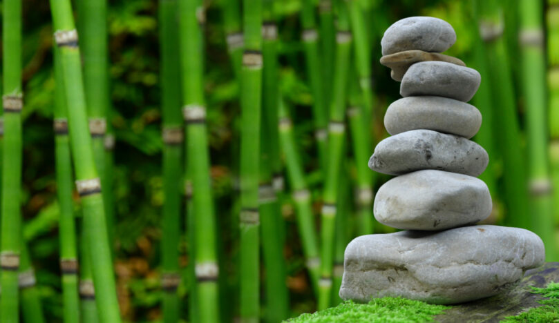 Soirée «Zen avant l'été», mardi 25 juin 2019